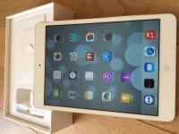 iPad Mini 2 retina Wifi 3G/4G 32go blanc
